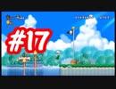 【2人実況】残念な2人が行く【NewスーパーマリオブラザーズWii】part17