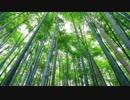 【ゾッとする淫夢】 タケノコ.lossy