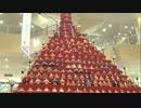 【三十路女の埼玉一周旅・鴻巣編】日本一のひな祭りお片づけ旅・前編
