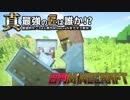 【日刊Minecraft】真・最強の匠は誰か!?絶望的センス4人衆がMinecraftをカオス実況第十一話!