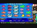 Crazy Ultra Big Win Casino €211700! High Rollers Play. Wild Shark Casino Slot. Fan game.