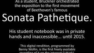 ベートーヴェン(ブルックナー編):ピアノソナタ第8番 ハ短調 作品13「悲愴」より 第1楽章(管弦楽版)