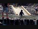 【みつえ青少年旅行村】川遊びをするあい❤ウォータースライダー すべり台 水遊び お出かけ