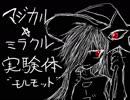 マジカル☆ミラクル実験体.ptcop