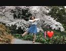 【あいあい】 I♥ 【踊ってみた】