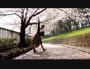 【いずみ】さよならガール 踊ってみた【桜満開】