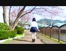 【桜の下で】サディスティックラブ【踊ってみた】