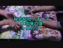 第14回 ヴァイス対戦~秘密結社アキレス大喧嘩ノ陣~其の5
