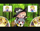お菓子作りの森☆