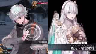 Fate/Grand Order カドック・ゼムルプス&アナスタシア 敵専用バトルボイス集(スキル、宝具等)