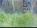 水の中のAnswer/杉山清貴