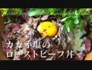 カカオ塩のローストビーフ丼【肉料理】