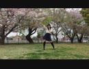 【初投稿】バタフライ・グラフィティ 踊ってみた 【ともか】【誕生日】 thumbnail