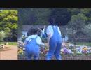 【あみぽん】バスター 踊ってみた【with.折鈴羅珠】