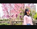 第73位:【JKデビューに】ハルイチ。を踊ってみた【奇紅(きぐれ)】 thumbnail