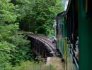 列車が走る音と鳥の鳴き声と渓流のせせらぎ(睡眠用BGM・作業用BGM)