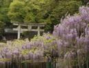 【ゆっくり】徒歩で日本一周part280【大分→豊後大野】