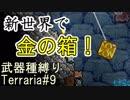 新世界で釣りをしてみよう! [terraria]武器種縛りで世界侵攻 #9 [4人実況]