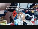 野田草履 溺愛しているハムスターが籠から脱走し、泣きじゃくりながら捜索。