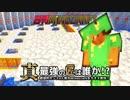 【日刊Minecraft】真・最強の匠は誰か!?絶望的センス4人衆がMinecraftをカオス実況第四十九話!