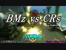 【マリカ8DX】交流戦 BMz vs CRs(SYM視点)【27試合目】