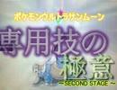 【ポケモンUSM】専用技の極意 ~SECOND STAGE~ 其の1