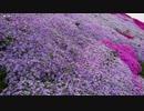 【生海月】なまくらじお【2018.4.26】