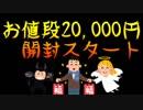 【福袋】謎センス…世にも奇妙な開封【¥20,000】