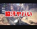 【MHW】俺とお前じゃSは無理!?Part.11【モンスターハンター:ワールド】