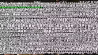 【全部屋コメント表示】オーイシ×加藤の超音楽祭2018 【20万コメント】