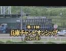 2018年 第19回 兵庫チャンピオンシップ(JpnⅡ)【テーオーエナジー】