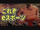 【SUMOMAN実況】相撲を取ってたら究極のeスポーツが誕生したwww