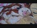 【クロスステッチ刺繍】水瀬伊織をクロスステッチ刺繍で刺してくれた。 thumbnail