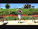 【鈴森瀬㮈】ラブチーノ 踊ってみた