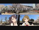 取り敢えず保奈美と亜子は『桜』を観たい【旅m@s】#00
