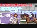 【ゆっくり解説】ゆっくりと学ぶ夢の第11R(アグネスタキオン編)