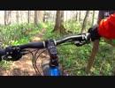 ファットバイク トレイルライド4 last part