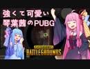 【PUBG】強くて可愛い琴葉茜のPUBG【VOICEROID実況】
