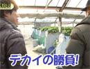嵐・梅屋のスロッターズ☆ジャーニー #399