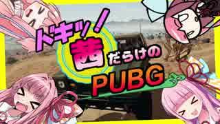 ドキッ!茜だらけのPUBG!! part1【VOICEROID実況】