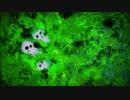 Princess Mononoke - Arrange Covered by Naumi