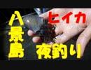 八景島で夜釣り】~投光器でヒイカと小サバ乱舞( ゚Д゚)~