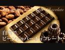 カカオ豆と砂糖で作る自宅ビーントゥバーチョコレート Bean to Bar Chocolate