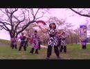 第87位:【雫石】千本桜【踊ってみた】