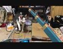 第14位:【逆襲のニャア】以前驚かされて以来、やたらニンテンドーラボに攻撃的な猫 thumbnail