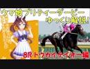 【第8R】 ウマ娘プリティーダービーに登場するキャラクターのモデルになった競走馬をゆっくり解説!トウカイテイオー編 thumbnail