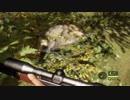 【the Hunter】狩猟体験コーナー 03【実況プレイ】