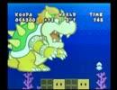 【実況】薄いマリオと厚いストーリー【ペーパーマリオRPG】 ページ24