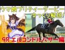 【第9R】 ウマ娘プリティーダービーに登場するキャラクターのモデルになった競走馬をゆっくり解説!エルコンドルパサー編