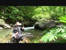 【福島渓流釣り】岩魚うじゃうじゃの渓で釣りまくり!